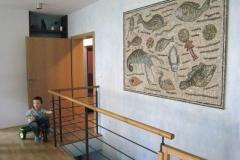 mozaika16